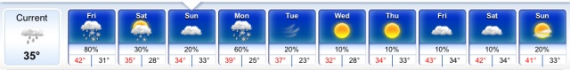 Ten day forecast for Chicagto on March 15th according to intellicast.com