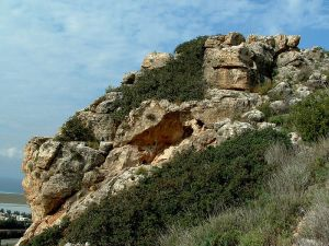 Sfunim Wadi - Mount Carmel Israel, Part of Carmel National Park Photo by Hanay from Wikimedia