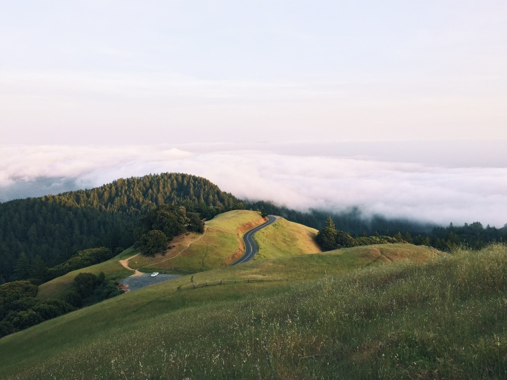 Road up a hill from unsplash